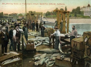 Morning scene on Fisherman's Wharf. The postcard is circa 1909 and Fisherman's Wharf was also known as the Railroad Wharf. Image courtesy of Frank Perry.