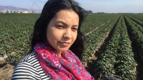 Rural reboot: Salinas is turning crop pickers into computer programmers