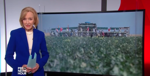 PBS NewsHour Features Salinas AgTech Strategy