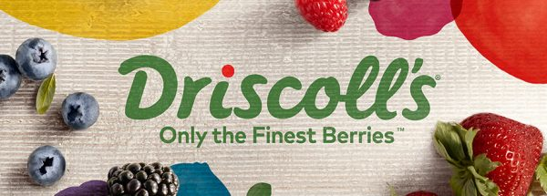 Driscoll's berries becomes THRIVE corporate partner to activate startup technologies across GLOBAL value chain