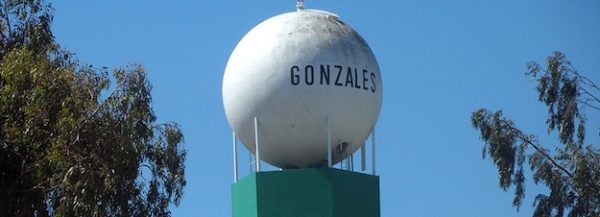 Gonzales putting broadband into every home, business