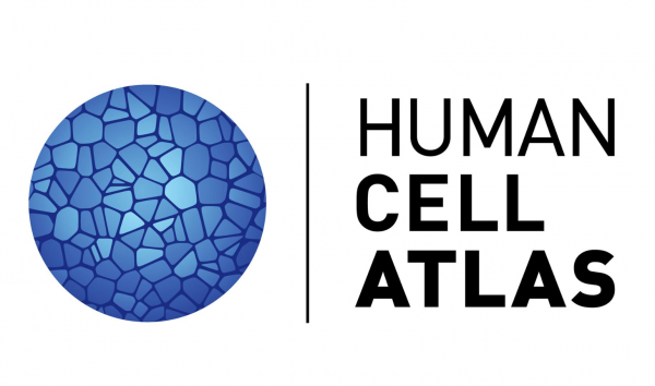 UCSC Genomics Institute joins international Human Cell Atlas Initiative
