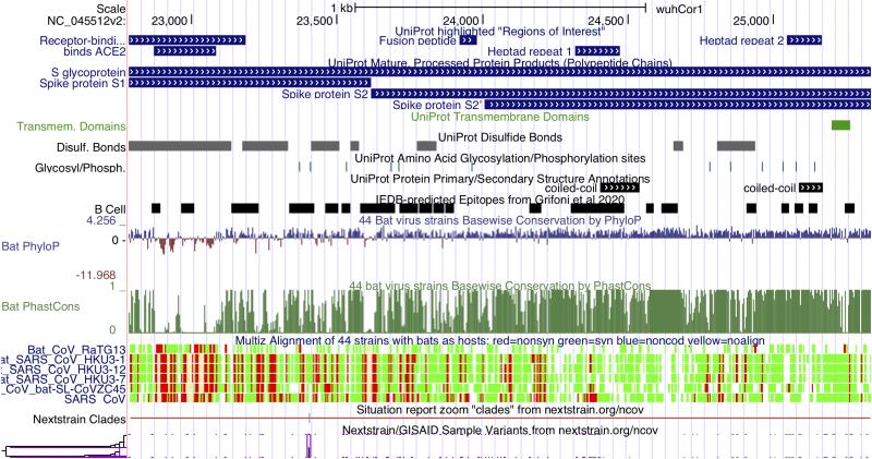 Data visualization of genome