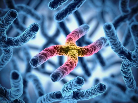 Scientists achieve first complete assembly of human X chromosome