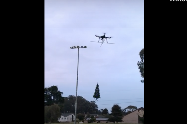 Christmas trees delivered by drone?