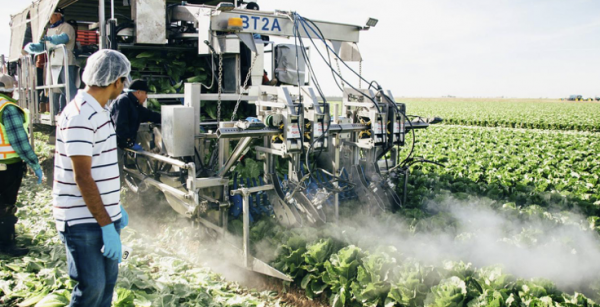 Western Growers Launches Global Harvest Automation Initiative